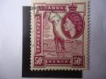 Stamps United Kingdom -  Jirafa -África del Este Británica (Kenia-Uganda-Tanzania) Queen Elizabeth II.
