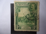 Stamps Grenada -  Zonas Costeras - Serie:George V