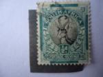 Stamps Africa - South Africa -  Gacela - Antílopes-Mamíferos