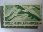 Sellos de America - México -  Entrega Especial - Paloma de la Paz.