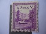 Sellos de Asia - Pakistán -  Paisaje de Montaña cerca a Kagan, Distrito de Hasara - 70 Aniversario de Pakistán.