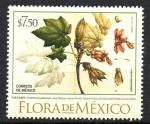 Sellos de America - México -  FLOR  DE  MANITA