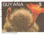 Sellos del Mundo : America : Guyana :  CACTUS- SUBUTIA HYALACANTHA