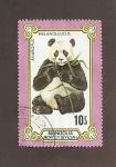 Sellos de Asia - Mongolia -  Oso Panda