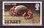 Sellos de Europa - Isla de Jersey -  Cangrejo araña