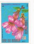 Stamps Equatorial Guinea -  FLORES- REHMANNIA ANGULATA