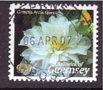 Sellos de Europa - Isla de Jersey -  serie- Flores