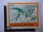 Stamps : Europe : Yugoslavia :  Golondrina (Herundo rustico) - Carta-Flores.