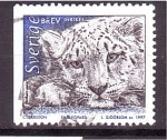 de Europa - Suiza -  Leopardo