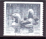 Stamps Europe - Sweden -  serie- Aves acuáticas