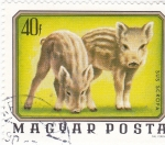 Stamps Europe - Hungary -  CACHORROS