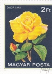 Stamps Hungary -  ROSA AMARILLA