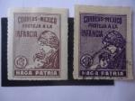 Stamps : America : Mexico :  Proteja a la Infancia - Haga Patria - Madre y Niño - Tax
