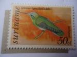 Sellos del Mundo : America : Surinam : Colibrí - (Polytmur guainumbi) Garganta Dorada de Cola Blanca