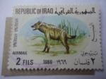 de Asia - Irak -  Hiena Rayada (Hyaena Hyaena) Serie:Animales Nativos.