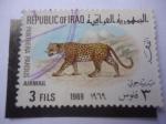 Stamps Iraq -  Leopardo (Panthera pardus) - Serie:Animales Nativos.