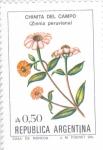 sellos de America - Argentina -  FLORES-CHINITA DEL CAMPO