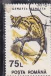 Stamps Romania -  GINETA
