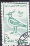 Stamps Romania -  AVE- VANELLUS