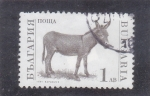 Stamps : Europe : Bulgaria :  BURRO