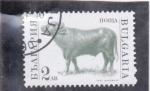Stamps Bulgaria -  TORO