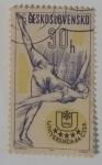 Stamps Czechoslovakia -  Chekoslovaquia 30 H