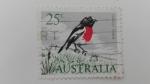 Sellos de Oceania - Australia -  Pajaros