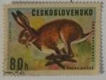 Stamps Czechoslovakia -  Chekoslovaquia 80 H