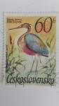Stamps Czechoslovakia -  Pajaros