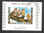 Stamps United Arab Emirates -  Mi1413BwBl - Aves