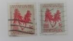 Sellos de Africa - Sudáfrica -  Erythrina Lysistenion