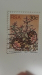 Stamps South Africa -  Protea Amplexicaulis