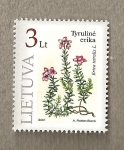Stamps Europe - Lithuania -  Erica tetralis