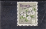 Sellos del Mundo : Africa : Uganda : FLORES-