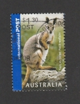 Stamps Australia -  wallaby de pies amarillos
