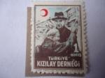Sellos del Mundo : Asia : Turquía :  Kizilay Dernegi-Sociedad Turca de la Media Luna Roja- Ayuda para heridos Caridad