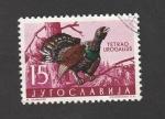 de Europa - Yugoslavia -  Urogallo