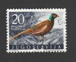 Stamps : Europe : Yugoslavia :  Faisán
