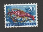 de Europa - Yugoslavia -  Langosta