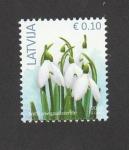 de Europa - Letonia -  Campanilla de invierno
