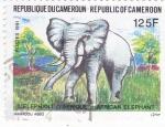 sello : Africa : Camerún : ELEFANTE AFRICANO