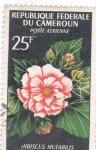 Stamps Cameroon -  FLORES- HIBISCUS MUTABILIS