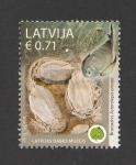 Stamps Latvia -  170 Aniv. de la creación del museo de ciencias naturales