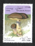 Stamps : Asia : Afghanistan :  Hongos, Gato resbaladizo (Suillus luteus)
