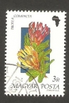 Stamps : Europe : Hungary :  3265 - Flor protea compacta