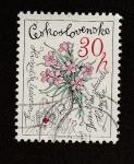 Stamps Europe - Czechoslovakia -  Flor de dios