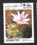 Sellos del Mundo : Asia : Afganistán :  Cactus, Pincushion cactus (Mammillaria yaquensis)