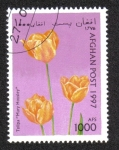 Stamps : Asia : Afghanistan :  Tulipanes