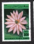 Stamps : Asia : Afghanistan :  Plantas Acuaticas, Lirio de agua roja de la India (Nymphaea rubra)