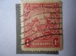 de America - Barbados -  Sello de la Colonia - George V en Coche tirado a caballo.